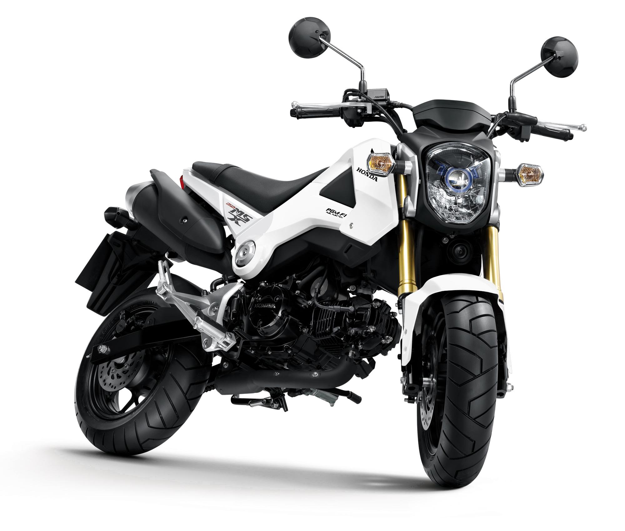 Surprise new mini-bike from Honda