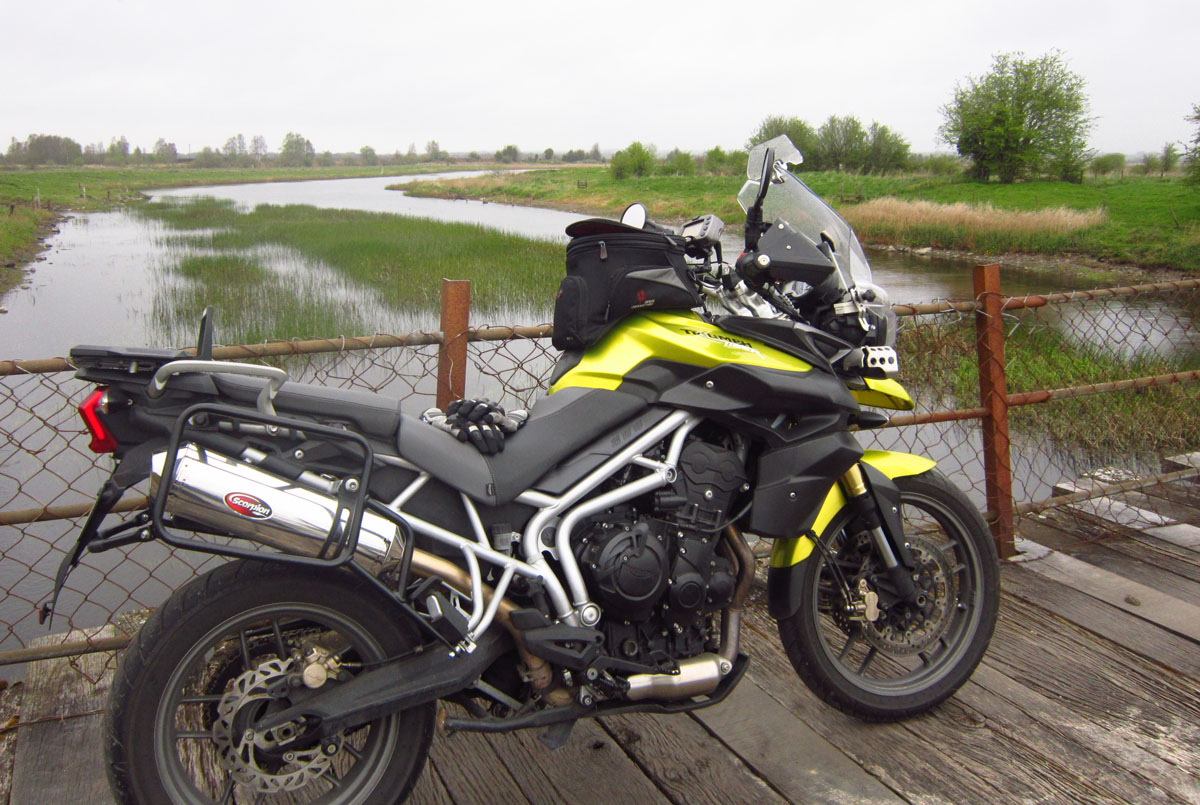 Tiger 800 and XC buyer guide: owners say | Visordown