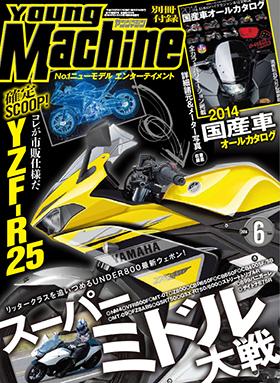 Best image of Yamaha's R25 so far