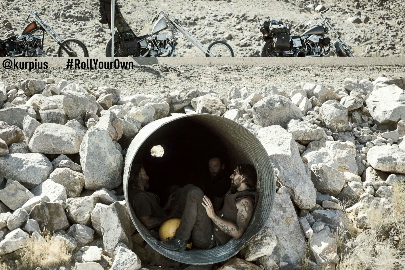 Caption that: We're hiding under here because we saw some bad-ass bikers. Have they gone?