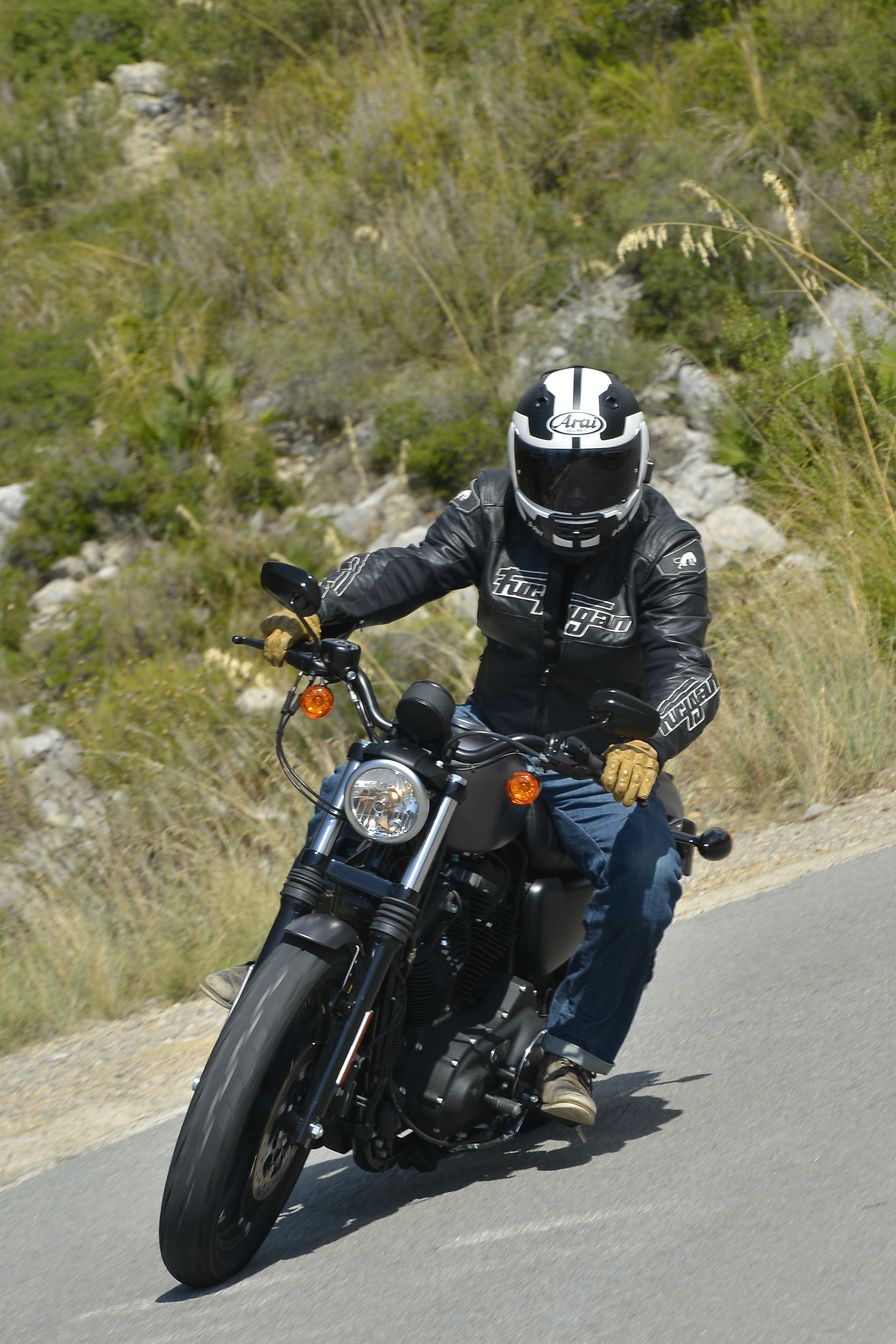 First Ride Harley Davidson Sportster Ir Visordown