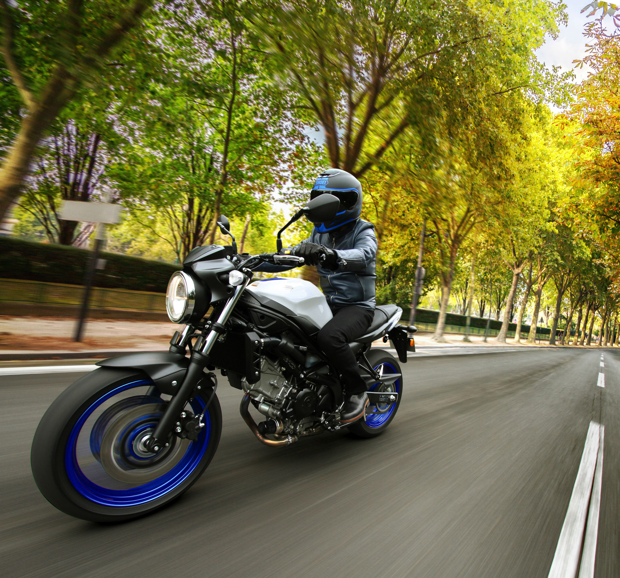 New Suzuki SV650!