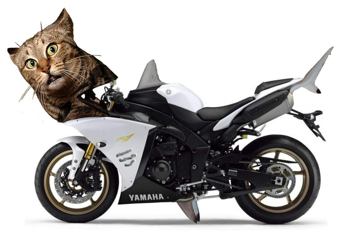 2012 Yamaha R1, Itu0027s A Pussy Cat.
