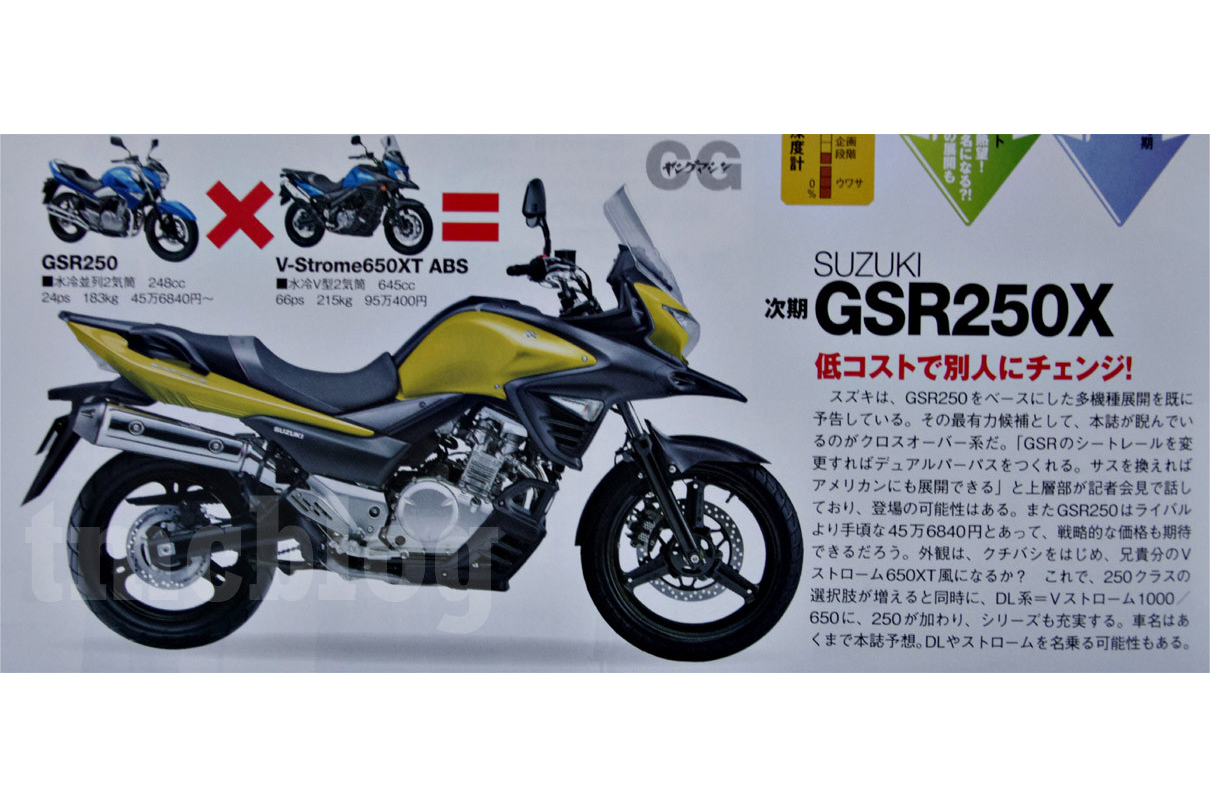 is this what the suzuki v-strom 250 migh | visordown