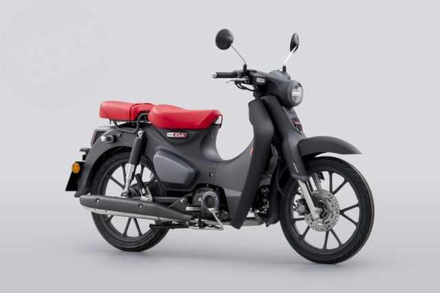 Updated Euro 5 2022 Honda Monkey announced