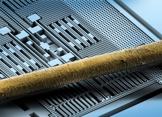 Bosch MEMS sensor with human hair