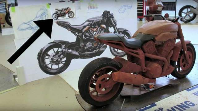 Harley - you tease.jpg