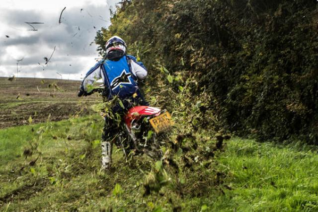 11 motorcycles seized in Thetford Forest for anti-social off-road riding