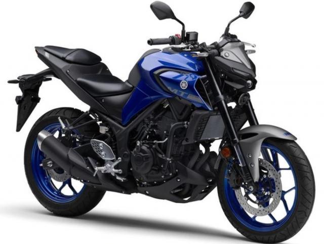 2021 Yamaha MT-25 Blue