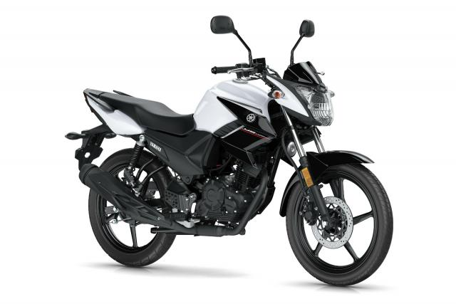 Top Ten L-plate bikes in the UK so far this year