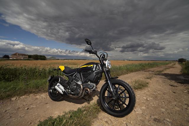 Ducati Scrambler 1100 Special Seat Height