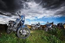 Land Rovers: '09 Yamaha XT660Z Ténéré, '03 KTM Adventure, '02 BMW R1150GS