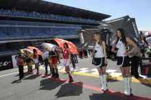pit babes gallery WSB 2013: Monza grid girls