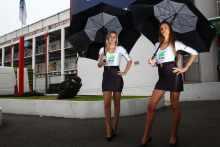 pit babes gallery WSB 2013: France paddock girls