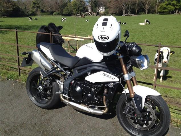 First Ride 2012 Triumph Speed Triple Review Visordown