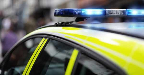 Police, Flashing Lights, Crime Scene, Police Motorcycle, Siren