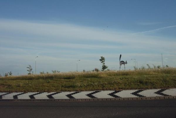 Black_Cat_Roundabout