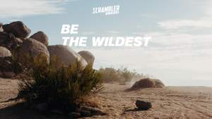 Ducati Teaser Be The Wildest
